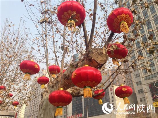 树上挂满了红灯笼 刘冰