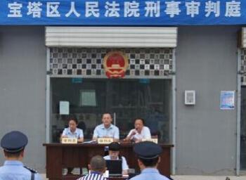 延安宝塔区法院:盗伐林木触刑律 集市开庭普法律