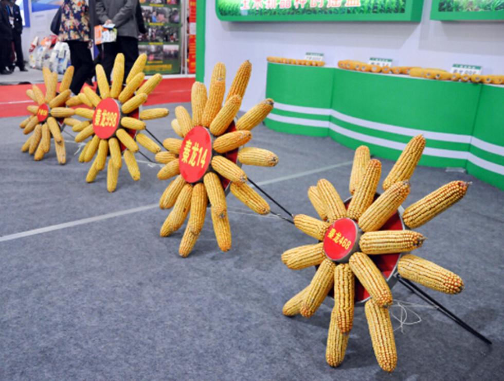 第24届中国杨凌农高会--陕西频道--人民网