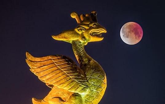 """月亮""""脸红了""""你是不是也该回家了"""