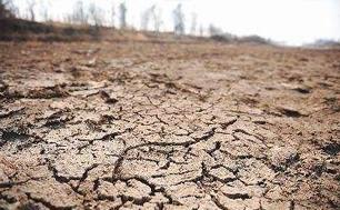 全球土地退化敲响粮食安全警钟        数据显示,近年来土地退化问题日益恶化。报告说,截至2014年,全球有超过15亿公顷原本有自然生态系统的土地被开垦。