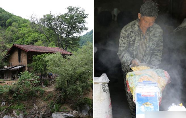 秦岭里的贫困户脱贫了 怕返贫加油干