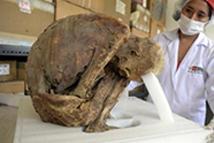 秘鲁出土一具完好木乃伊 至今已千年